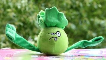boxing cabbage